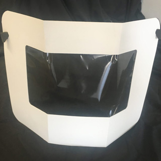 Mod Scenes | PPE - Disposable Face Shield